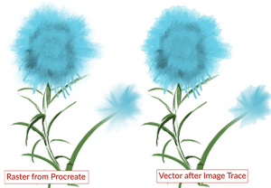 Raster drawing of painted flower compared to converted vector drawing. The vector drawing has lost detail.