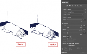 Complex outline raster converted to vector with image trace options
