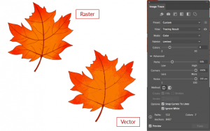 Outlined painterly raster converted to vector image trace options
