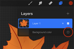 Layers panel open with background layer turned off